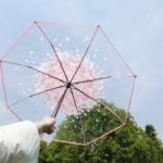 Romantic Transparent Cherry Blossoms Three-fold Umbrella for Girls